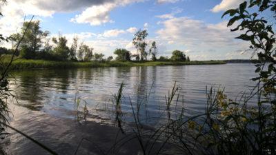 Волга с острова
